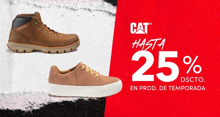 CAT_interna